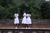 Schoolgirls on the Demodara Nine Arch Bridge (Tim&Elisa) Tags: srilanka demodaraninearchbridge asia canon bridge ella train tracks schoolgirls