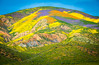 Superbloom Carrizo Plains National Monument Tembler Range Desert Spring Wildflowers Fine Art Photography 45EPIC Dr. Elliot McGucken Fine Art Landscape and Nature Photography! California Super Bloom! God Spilled the Paint! (45SURF Hero's Odyssey Mythology Landscapes & Godde) Tags: superbloom carrizo plains national monument tembler range desert spring wildflowers fine art photography 45epic dr elliot mcgucken landscape nature god spilled paint