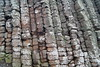 DSC02209 (margaret.metzler) Tags: northernireland coast ocean giantscauseway sea stone rock pillar column 2017