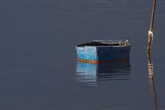 En repòs, _DSC3384_NKD500 (Francesc //*//) Tags: deltadelebre deltadelebro catalunya tarragona viatjar marina mar sea lamer marine