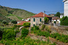 Little Village 1420 (_Rjc9666_) Tags: algarve arquitectura colors douro flowersplants green nikkor35mm18 nikond5100 portowine portugal sky street summer tourismo travel turismo urbanphotography tourism vineyard ©ruijorge9666 ervedosadodouro viseudistrict pt 2117 1420