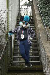 _DSC9970 (MM Furry Photo) Tags: furry fursuit fursuiting tux doggo dog canine