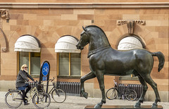 Bronze horse Sculpture at Blasieholmen -Explored 24/04/2018- (PriscillaBurcher) Tags: bronzehorsesculpture blasieholmen stockholm sievertlindblom bicycle explored l1290022