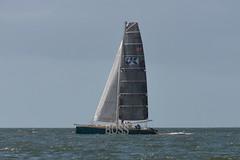 LOX_3796 (Lox Pix) Tags: australia queensland brisbanetogladstone yachtrace catamaran trimaran 2018 bossracing multihull loxpix moretonbay shorncliffe cabbagetreecreek rudder aground sailing loxworx