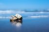 Heisaura beach / Canon EOS60D:SIGMA Art 30mm F1.4 DC HSM (telenity) Tags: eos60d danboard mini sigma art canon cute coast ダンボー