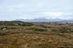 View on the twelve bens (Nelleke C) Tags: 2017 letterdyfehouse roundstone connemara countygalway holiday ierland ireland landscape landschap peatbog vakantie veen