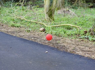 A red ballon goes by..