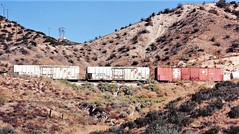 Southern Pacific Fruit Express reefers and a Santa Fe boxcar at Cajon Summit in 1992 (Tangled Bank) Tags: train railroad railway rolling stock cars equipment freight old classic heritage vintage fallen flag sp cajon pass summit california