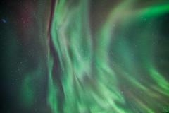 untitled-17-7 (Christy Turner Photography) Tags: auroraborealis northernlights aurora aurorachaser albertaaurorachasers canada nightscape northern lights corona