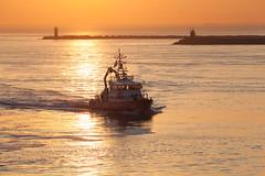 Golden Hour IJmondhaven (tribsa2) Tags: nederlandvandaag sunrisesunset sunset seaside sky seascape shoreline sea ship schip vessel