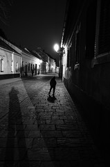 The Game of Shadow (Koprek) Tags: ricoh gr croatia varaždin april 2018 streetphotography nightlight