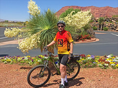 The yuccas are in blossom. (Runemaker) Tags: dl yucca blossom snowcanyon ivins utah bicycle bicycling cycling runemaker