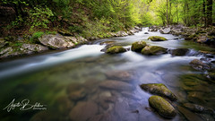 Middle prong of the Little River (Angelo Bufalino - Avstock.net) Tags: mountains smokymountains nikon d810 lee leefilters superstopper nd ndfilters river stream longexposure