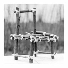 sculpture (rcfed) Tags: hasselblad mediumformat film trix rodinal stand bw wood chair