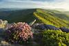 Springtime on Jonas Ridge (R. Keith Clontz) Tags: jonasridge linvillegorge grandfatermountain morning spring springtime greensunlight cliff canyou gorge slope hawksbillmountin northcarolina scenic