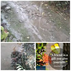 . @angelcandices now u got drought season rain demo here. so ask capetown to give cod 7m $ 77min drought rain show advance confirmation . that if indeed they got 77 min rain within 7th April they will pay 7m $ as cod here https://www.paypal.me/7thhavenone (samrat477415) Tags: samratvision 7 photo pic httpswwwpaypalme7thhavenon otgers 7thheaven 77min 7m angelcandices park maintain here 7th indeed alcoholic ask drought min within volunteers manage secrets pay vvv advance cod making u season capetown if lab that got april heaven victoria will confirmation they now give theme demo man non for show rain 77 n nature the