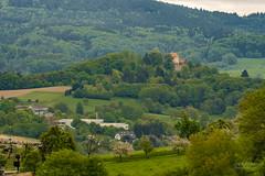 Der Odenwald (rockheadz) Tags: odenwald wald forrest grün bäume trees