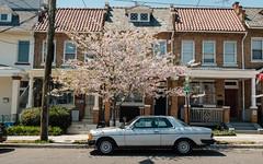 Springtime in Brookland (ep_jhu) Tags: ne x100f classicchrome washington cherryblossom rowhouses brookland fuji classic mb antique dc fujifilm mercedesbenz