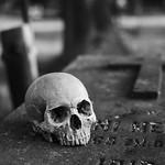 Skull grave Cross thumbnail