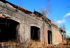 (Jean-Pierre Zicot) Tags: belgique hainaut charleroi marcinelle hiercheuses laverie charbonnage charbons mines ruines