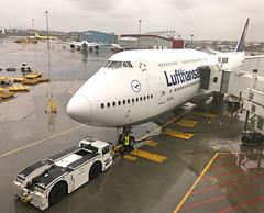 LH 423 to Frankfurt (jp.marottta) Tags: dabyf lufthansa lufthansagermanairlines frankfurt loganairport kbos volpeiab frankfurtammainairport fra lh423 b747800i boston bos
