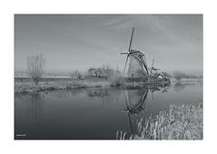 Ein Wintertag in KINDERDIJK  VI (Babaou) Tags: niederlande nederland kinderdijk weltkulturerbe windmolen windmill windkraft windmühle molen sw bw nb zuidholland dxopl spiegelung