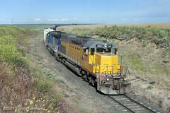 Hanson, WA (Joel Hawthorn) Tags: emdsd40t2 ewg graintrain shortlinerailroad