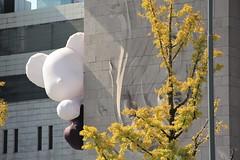 Ginko Bear (Jane Inman Stormer) Tags: chibi seoul ginko tree building architecture sculpture cute bear white black stone yellow fall october