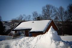 Holga week 15 (KvikneFoto) Tags: holga nikon vinter winter snø snow norge hedmark kvikne