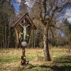 Forstenrieder Park, Bayern (Janos Kertesz) Tags: forstenriederpark bayern bavaria kreuz kruzifix forest nature wood tree wooden old background outdoors green flower symbol jesus