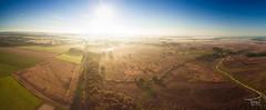 Balloërveld Panorama (Fred van Os) Tags: mist bloei sunrise heide balloerveld drenthe netherlands nl