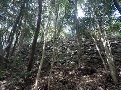 Kiri Doshi wall3 vSE _orig_LG (Hazbones) Tags: iwakuni yamaguchi yokoyama castle kikkawa suo chugoku mori honmaru ninomaru demaru wall armor samurai spear teppo gun matchlock map ropeway