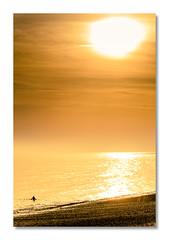 To the Sun... (Blain Nicolas) Tags: soleil nblain nicolasblain blain pourville seinemaritime france normandie normandy