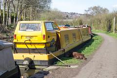 Peckham, Paris & Peak Forest Canal ! (Marra Man) Tags: onlyfoolsandhorses rodneytrotter canalboat longboat reliantrobin peakforestcanal newmillscanal