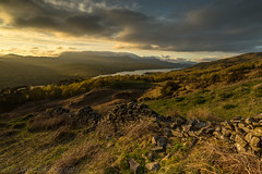 Gold in those hills...... (tdove77) Tags: 1635mm sonya7ii southlakes goldenhour cumbria lakedistrict coniston