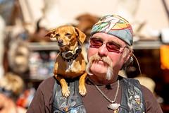 Best Friends (Thomas Hawk) Tags: america arizona cavecreek usa unitedstates unitedstatesofamerica biker desert dog us fav10 fav25 fav50