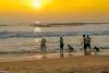 Beach (Balaji Photography') Tags: beach chennai bechesinchennai beachsand sunny sunlight sunrays sunrise people beachesofindia beachwalk beachphoto chennaiphotos chennaireflections marinabeach marina water bayofbengal coastline coastal india