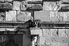 All Saints Church Hessle Monochrome (brianarchie65) Tags: church hessle hesslesquare monochrome blackandwhite blackandwhitephotos blackandwhitephoto flickrunofficial flickruk flickr flickrcentral ukflickr canoneos600d geotagged brianarchie65 spire buildings gravestones clock trees masonry gargoyle weathervane
