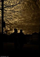 Tobacco-Stained Sky (Neil. Moralee) Tags: neilmoralee neilmoraleenikond7200 sky dark sepia tobacco tobaccostained couple silhouette tree bristol city neil moralee nikon d7200 jumblies long shadow dim street sunset mono monochrome tinted toned uk people evening black