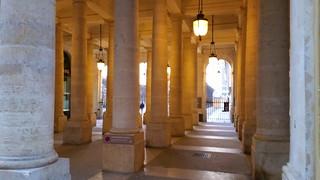 580 Paris en Février 2018 - les colonnes du Palais Royal