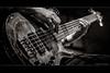 Bass Trap... (jayem.visuals) Tags: bass blackwhite blackandwhite concert livemusic male man men music musician people rock ©jayemvisuals ©juergenmaeurer