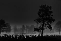 9387 Graves III (The Black Fury) Tags: cemetery omahabeach normandie normandy collevillesurmer fog tree lowkey black white bw blackandwhite