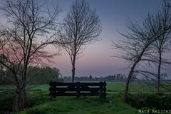 little gate (spring edition) (wardkeijzer_107) Tags: gate polder oosterschelde zeeland lente kleuren trees sunset national park tureluur ik