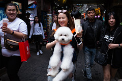 Nameless (Spontaneousnap) Tags: spontaneousnap street shanghai china city like candid documentary people publicareas lifestyle 上海 ricohgr takeabreak afternoon asia smile pet dog friendly littledoglaughednoiret
