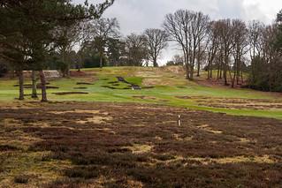 Woking Golf Club-E3290176