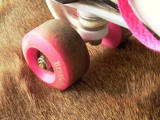 Roller Skating on a Fur Rug