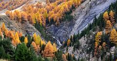 France - vallée de l'Ubaye -couleurs d'automne (AlCapitol) Tags: france valléedelubaye nikon d800 automne autumn cascade waterfall