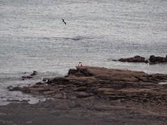 Low Tide at Playa Bonita, Panama (Chris Oler) Tags: panama playabonita beach lowtide travel pacific
