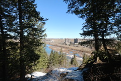 A great day for a walk around Calgary it ended up being 17 kms in the end due to bridge construction. (davebloggs007) Tags: calgary walking hiking alberta canada city trails douglas fir trail
