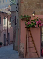 As Good as it Gets (bill.dottore) Tags: montepulciano